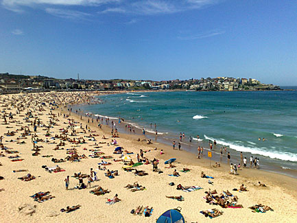 how to go to bondi beach from circular quay